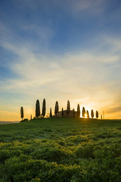 IBXDJS03946652 Farm with cypress trees, sunrise, UNESCO World Heritage Site Val d'Orcia, near Pienza, Province of Siena, Tuscany, Italy