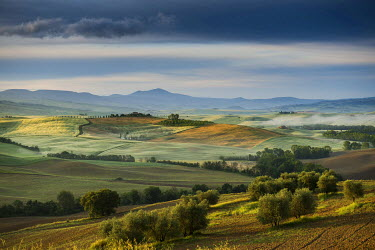 IBXDJS03947484 Landscape with hills, morning light, UNESCO World Heritage Site Val d'Orcia, near Pienza, Province of Siena, Tuscany, Italy