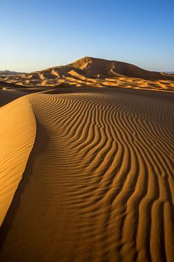 IBXDJS04228692 Sand dunes at Merzouga, Meknes-Tafilalet Region, Erg Chebbi, northern Sahara, Morocco, Africa