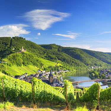 GER9383AW View of River Moselle and Bernkastel-Kues, Rhineland-Palatinate, Germany