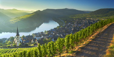 GER9398AW View of River Moselle, Bremm, Rhineland-Palatinate, Germany