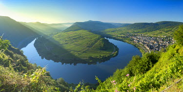 GER9400AW View of River Moselle, Bremm, Rhineland-Palatinate, Germany