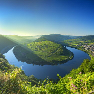 GER9401AW View of River Moselle, Bremm, Rhineland-Palatinate, Germany