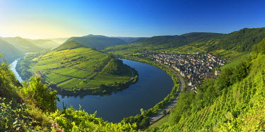 GER9402AW View of River Moselle, Bremm, Rhineland-Palatinate, Germany