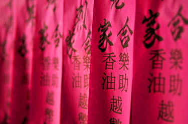 IBXGZS01175956 Prayer flags, prayer slips, black Chinese characters on pink tissue paper, at Chua Thien Hau Temple, Ho Chi Minh Sity, Saigon, Vietnam, Southeast Asia