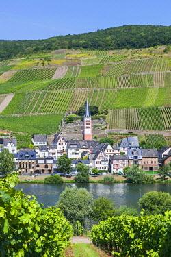 TPX56838 Germany, Rhineland-Palatinate, Moselle, Zell