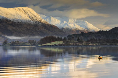 SCO34171AW Scotland, Highland, Ballachulish. Loch Leven and the mountains of Lochaber on a winter morning.