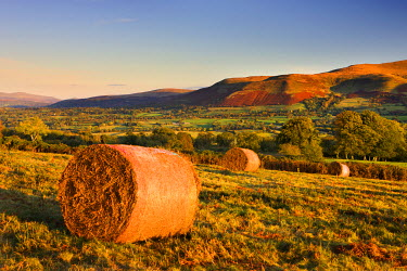 WAL7531AW Bracken bales on Mynydd Illtud Common in the Brecon Beacons National Park, Powys, Wales, UK. Autumn (October) 2009