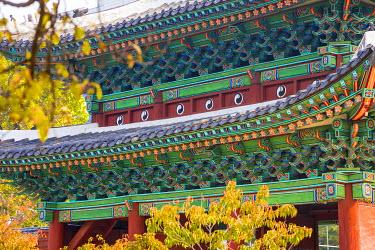 KR01297 Honghwamun Gate, Changgyeonggung Palace, Seoul, South Korea