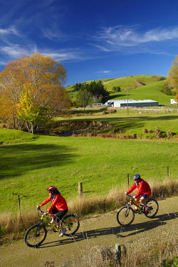 Cyclists on Clutha Gold Trail, Evans Flat near Lawrence, Central Otago, South Island, New Zealand (MR)