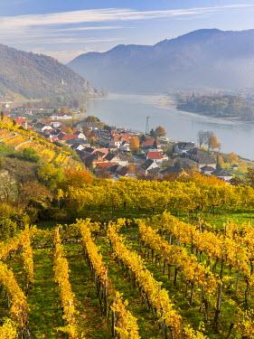 EU03MZW0755 The village Spitz in the Wachau. The Wachau is a famous vineyard and listed as Wachau Cultural Landscape as UNESCO World Heritage. Austria
