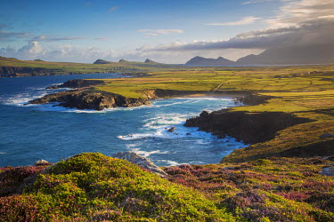 Dawn view over Ballyferriter Bay, Sybil Point and the peaks of the Three Sisters, Dingle Peninsula, County Kerry, Ireland.