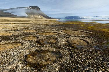 EU21CMI0911 Norway, Svalbard, Nordaustlandet, Palanderbukta (Palander Bay) Zeipelodden. Arctic desert habitat, natural stone circles caused by cryoturbation (aka frost churning).