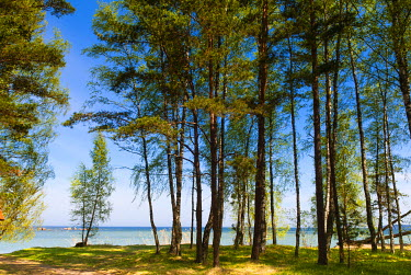 EU35NTO0118 Baltic sea, Vana Juri Ots, Estonia, Baltic States