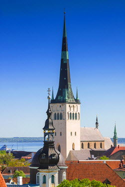 EU35NTO0156 Medieval town walls and spire of St. Olav church, view of Tallinn from Toompea hill, Old Town of Tallinn, UNESCO World Heritage Site, Estonia, Baltic States