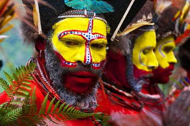 OC12MRU0208 Colorful dress and face painted local tribes celebrating the traditional Sing Sing in Paya in the Highlands of Papua New Guinea, Melanesia