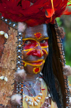 OC12MRU0209 Colorful dress and face painted local tribes celebrating the traditional Sing Sing in Paya in the Highlands of Papua New Guinea, Melanesia