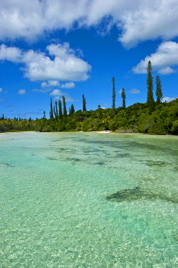 OC19MRU0143 Bay de Oro, Ile des Pins, New Caledonia, Melanesia, South Pacific