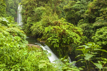 SA22BJY0044 Central America, Costa Rica, Monteverde Cloud Forest Biological Reserve. Magia Blanca Waterfall in rain forest.