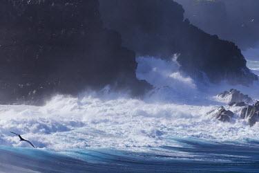 SA07EGO0027 Ecuador, Galapagos Islands, Espanola, Punta Suarez. Rocky coastline.