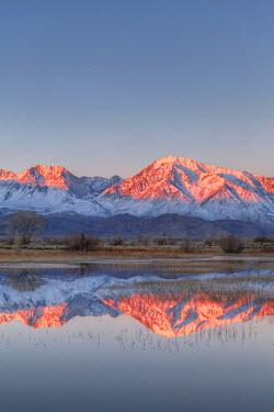 US05BJY0468 USA, California, Bishop. Sierra Crest reflects in Farmer's Pond at sunrise.