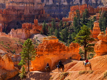 US45JWI0904 Utah, Bryce Canyon National Park, Bryce Canyon and Hoodoos with horseback riders on Peekaboo Loop Trail