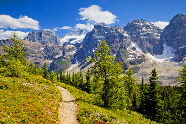 CAN3120AW Footpath through the Valley of the Ten Peaks, Banff National Park, Alberta, Canada