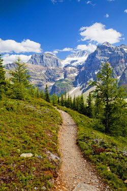 CAN3121AW Footpath through Valley of the Ten Peaks, Banff National Park, Alberta, Canada