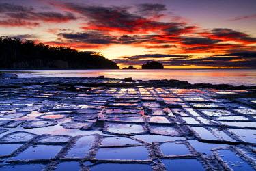 AUS2474AW Tessellated Pavement, Eaglehawk Neck, Tasmania