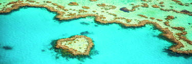AUS2518AW Heart Reef, Great Barrier Reef, Queensland, Australia