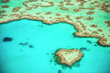 AUS2520AW Heart Reef, Great Barrier Reef, Queensland, Australia