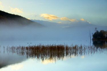 SCO34395AW Mist over Loch Pityoulish, Highland Region, Scotland