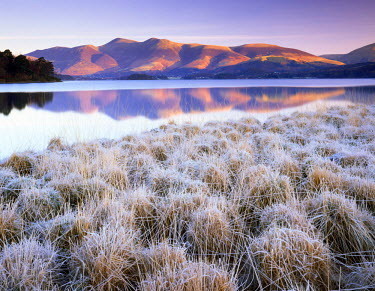 ENG14043AW Frosted Grasses & Skiddaw Reflecting in Derwent Water, Lake District National Park, Cumbria, England