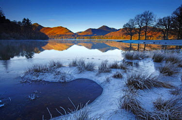 ENG13820AW Frost Along Derwent Water, Lake District National Park, Cumbria, England