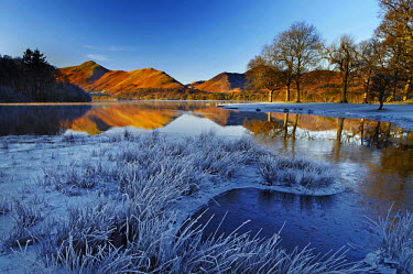 ENG13821AW Frost Along Derwent Water, Lake District National Park, Cumbria, England