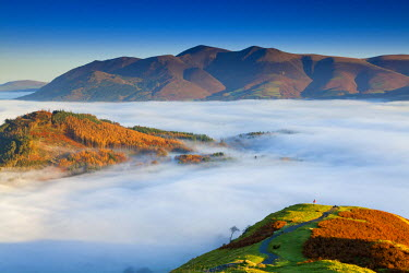 ENG13859AW Hiker Overlooking Low Cloud From Catbells, Lake District National Park, Cumbria, England Below Skiddaw, Lake District National Park, Cumbria, England