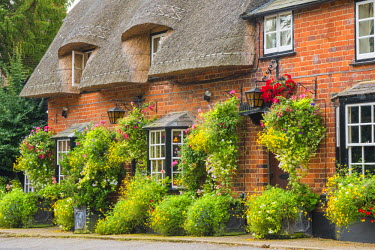 ENG13911AW Thatched Pub, Arkesden, Essex, England