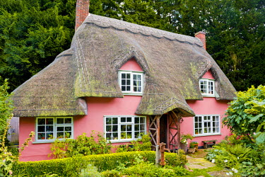 ENG13912AW Thatched Cottage, Widdington, Essex, England