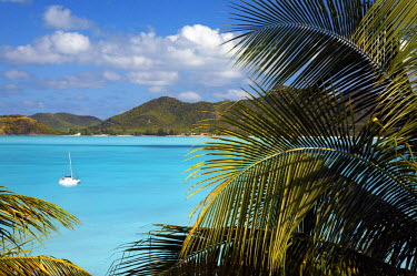 ANB0003AW Coco Bay, Antigua, Caribbean, West Indies