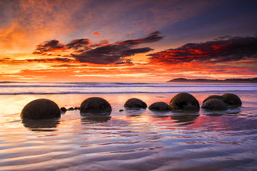 NZ9168AW Moeraki Boulders at Sunrise, Otago Coast, New Zealand