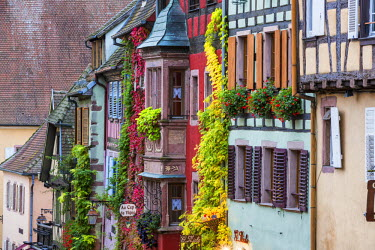 FRA9420AW Traditional Ancient Timbered Buildings, Riquewihr, Alsace, France