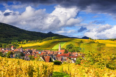 FRA9421AW View over Riquewihr, Alsace, France