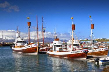 ICE3983AW Whale Watching Boats, Husavik, Iceland