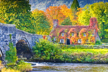 WAL7548AW Cottage & Bridge in Autumn, LLyanwrst, Conwy, Wales