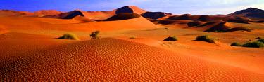 NAM6268AW Sand Dunes, Sossusvlei, Nambia, Africa
