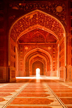 IND8196AW Taj Mahal,  Agra, Uttar Pradesh, India