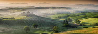 ITA9813AW Mist around Belvedere, Val d'Orcia, Tuscany, Italy
