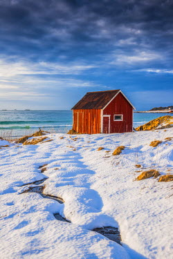 NOR0866AW Red Shack in Winter, Lofoten Islands, Norway