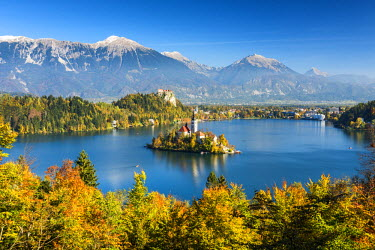 SLO1185AW Lake Bled with Assumption of Mary's Pilgrimage Church, Slovenia, Europe