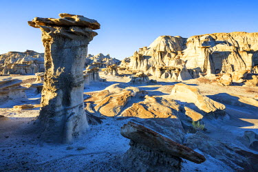 USA12023AW Hoodoos, Bisti Wilderness Area, New Mexico, USA